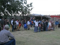 Night show cast